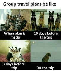 Group travel plans be like when plan is made 10 days before the