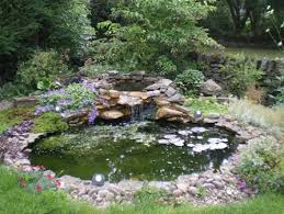 Garden Pond Ideas Best Garden Pond Design Ideas Pictures Interior Design Ideas