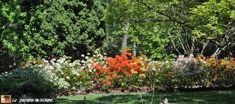 fleurs vivaces rustiques calendrier des floraisons des bulbes vivaces annuelles u2026 le