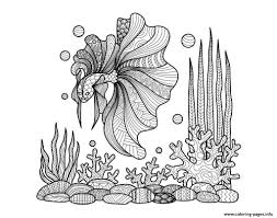 zentangle fish on corals by bimdeedee coloring pages printable