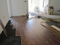 Laminate Flooring For Dogs Bold And Fresh Green Button Homes