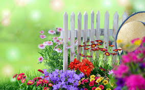 beautiful garden images hd photos live wallpaper hq pictures