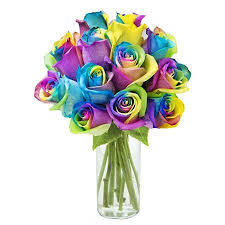 fresh flowers kabloom fresh flowers bouquet of 12 rainbow roses in a glass