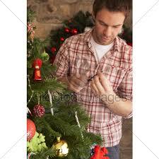 fixing christmas tree lights young man fixing christmas tree lights gl stock images