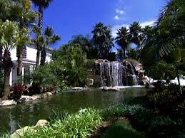 Tropical Backyard Ideas Tropical Rainforest Backyard Video Hgtv