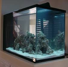 Marine Aquascaping Techniques Avoid These 5 Live Rock Aquascaping Pitfalls