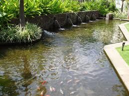 Backyard Small Pond Ideas Garden Design Raised Pond Ideas Pond Pumps Pond Water Features