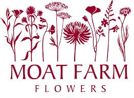 Flower Shops In Suffolk Va - farm flowers a flower farm in suffolk