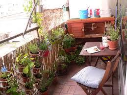 gem se pflanzen balkon fräuleins wunderbare welt grüne balkonoase mit tendenz zur