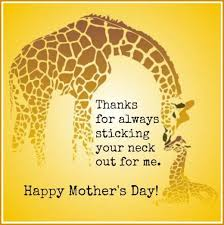 s day giraffe 60 best s day images on mothers day cards