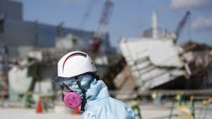 tat de si e fukushima kernschmelze die technik tat genau was sie sollte golem de