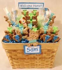 Pet Gift Baskets The 25 Best Welcome Home Basket Ideas On Pinterest Vacation