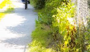 rock creek trail md maryland trails traillink com