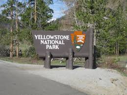 earthquake rattles northwest part of yellowstone national park