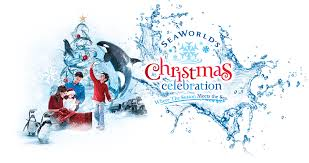seaworld u0027s christmas celebration magical getaway blog