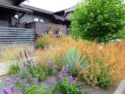 native plants in oregon case study u2013 native garden u2013 creative landscapes inc