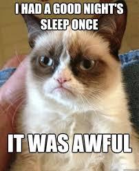 Sleepy Cat Meme - i had a good night s sleep cat meme cat planet cat planet
