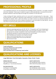 Professional Skills On Resume What Should Be Key Skills In Resume Free Resume Example And