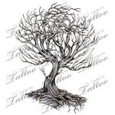 wall shining sun garden works elm tree via jim jones tree s of