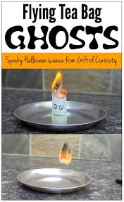Best Halloween Gifts 17 Best Images About Teach Fall On Pinterest Thanksgiving