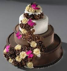 78 best cake images on pinterest birthday cakes birthday ideas