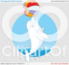 cute clipart beluga whale collection