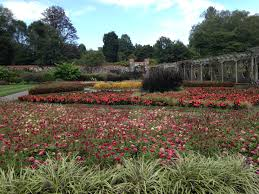 Asheville Nc Botanical Garden by Eating Vegan In Asheville N C Lisa U0027s Project Vegan