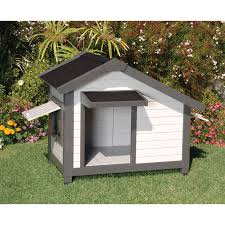 Splendent Awsome Places And Dogs Dog Houses Ny Cat Dog S To