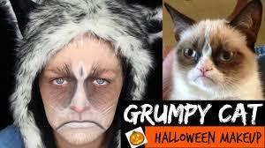 easy grumpy cat halloween makeup tutorial kvd metal matte
