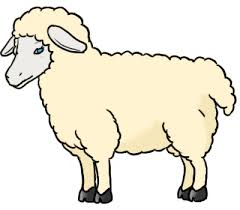 sheep coloring sheet animal coloring pages kids coloring pages