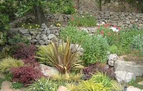 reliability plus property care and landscaping
