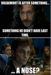 Hilarious Harry Potter Memes - technically voldenort had a nose it was just flat against his