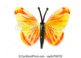 colourful butterfly isolated on white background stock images