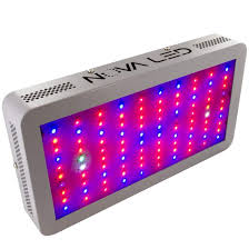 led lights for indoor plants advantages of using led grow lights on your house plants