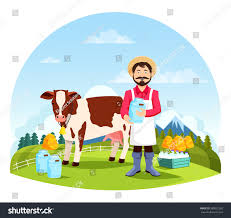 farmer near cow bottles milk cartoon stock vector 580032262