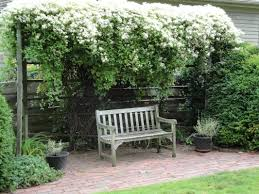 100 shrub landscaping porch landscaping ideas for your