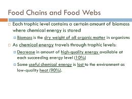 what travels through a food chain or web images Energy in an ecosystem species interactions population dynamics jpg