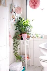 Idea For Home Decor 306 Best Plants For Home Decor Images On Pinterest Plants