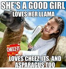 Internet Drama Meme - don t feed the drama llama posts facebook