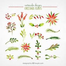christmas plants watercolor christmas plants collection vector free