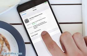 iphone cannot take photo cannot download ios 10 beta over the air on iphone ipad quick fix