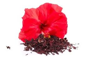 jamaica flower flavor insight hibiscus fona international