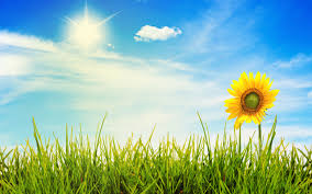 10 tips to make today a brighter day anahera newsanahera news