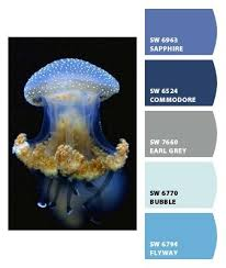 1359 best paint color tips tricks images on pinterest