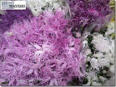 Flowers In Detroit - eclair spray rose japanese flowers from mayesh wholesale florist