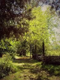 Maryland national parks images Best 25 parks in maryland ideas potomac maryland jpg