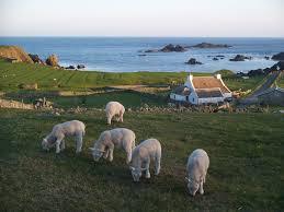 fair isle fair isle auld haa guesthouse