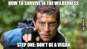 Man Vs Wild Meme - man vs wild in a nutshell 9gag