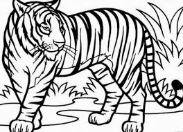 modest tiger coloring pages 94 4235