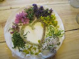 la cuisine des plantes sauvages plantes sauvages cueillette cuisine et produits de bien être